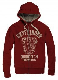 HARRY POTTER - HOODED SWEATER GRYFFINDOR QUIDDITCH VINTAGE - SIZE M