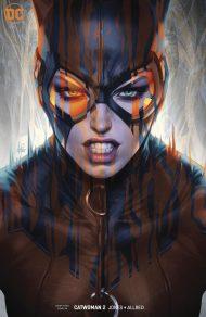 Catwoman Vol 5 #2 Stanley Artgerm Lau Variant Cover
